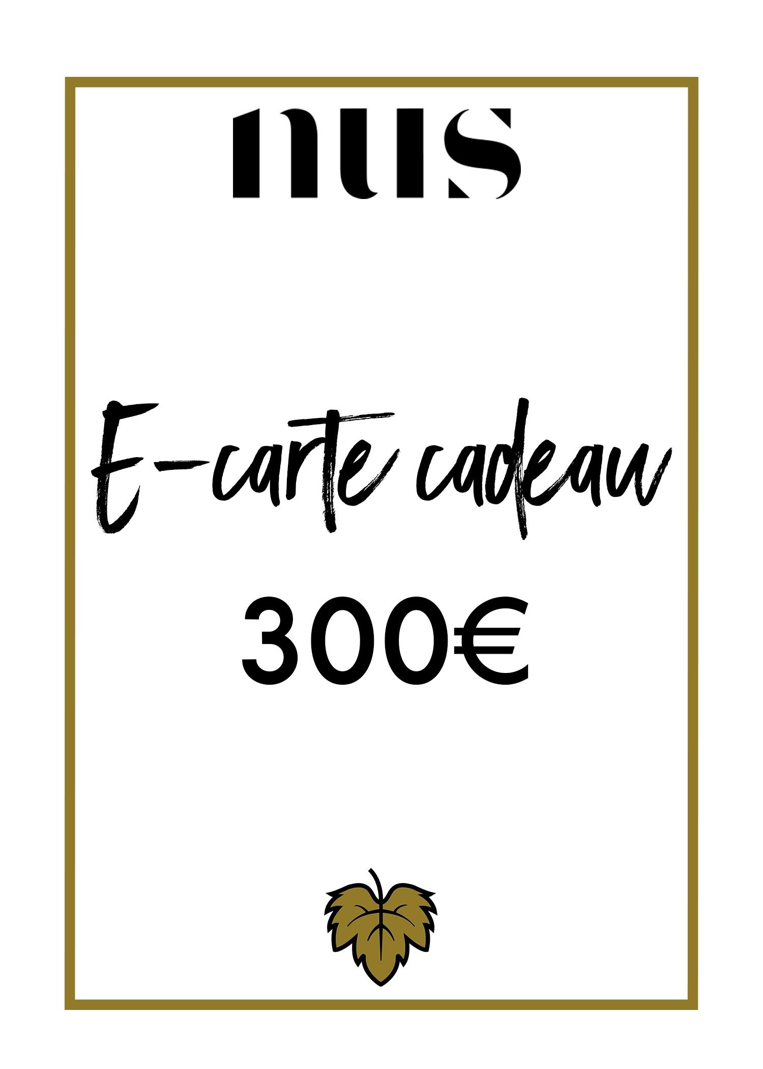 E-CARTE CADEAU 300€
